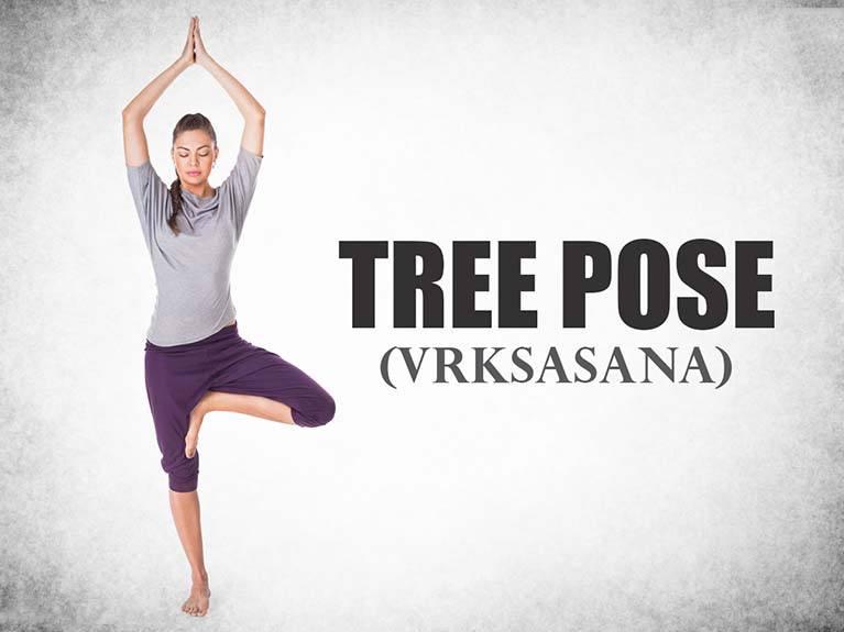 Tree-Pose-Vrksasana