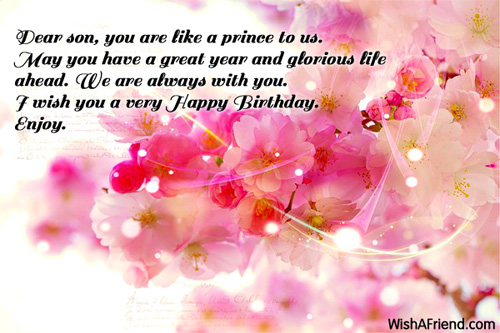 A Wonderful Person Always Has A Wonderful Life Wish You A Very Son Birthday Wishes