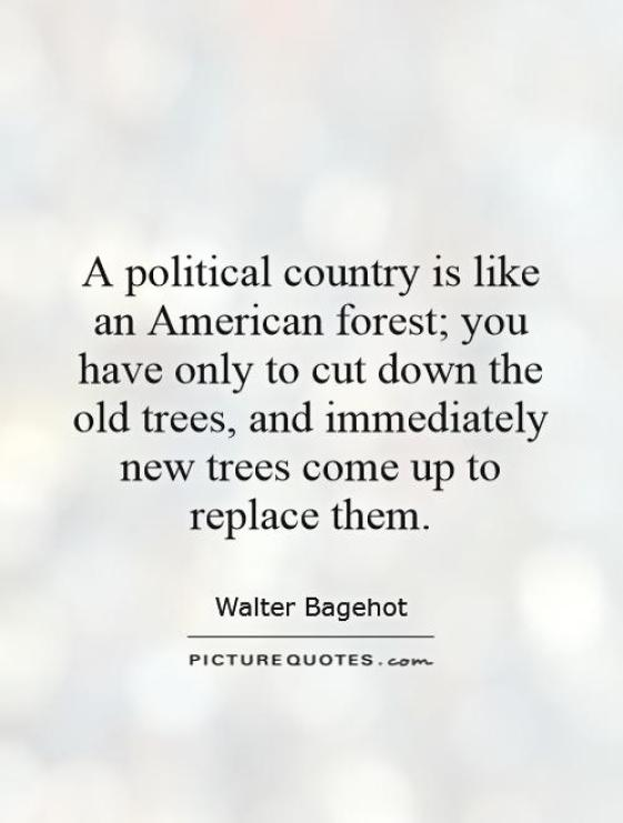 A political country is like an American forest you have only to cut down the old trees and immediately new trees come up to replaceWalter Bagehot