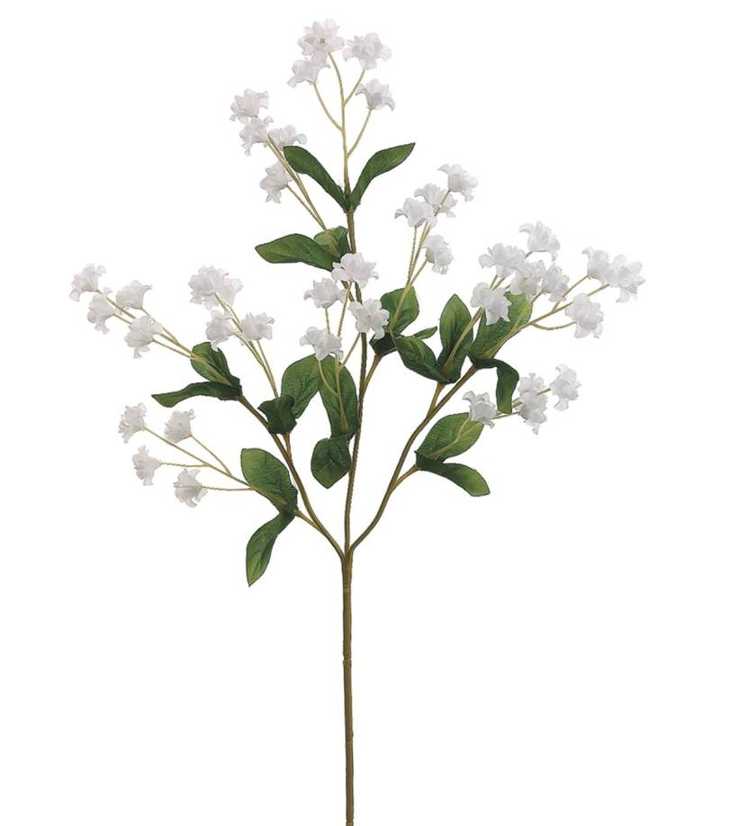 Awesome White Baby's Breath Flower Plant Wallpaper