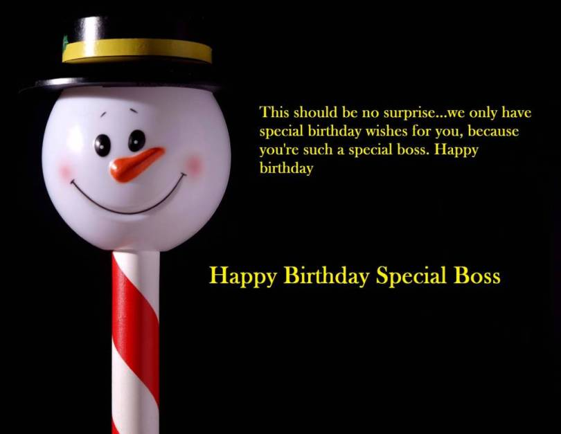 Best Boss Birthday Quotes