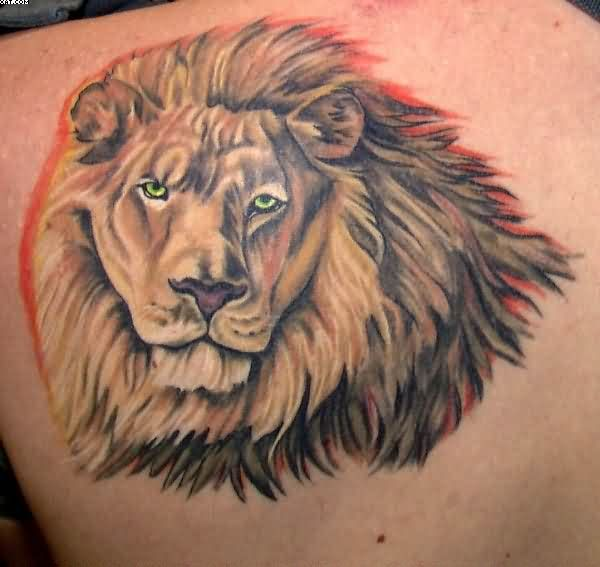 Best Ever Grey Red And Yellow LIght Color Ink Majestic African Lion Tattoo On Boy's Back