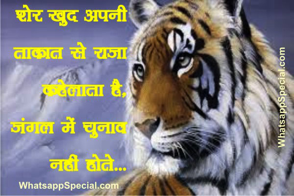 Funny Attitude Sayings In Hindi
