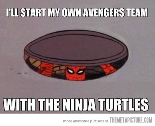 Funny Ninja Memes Ill Start My Own Avengers Team With The Ninja Picture