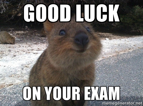 Good Luck On Your Exam Meme