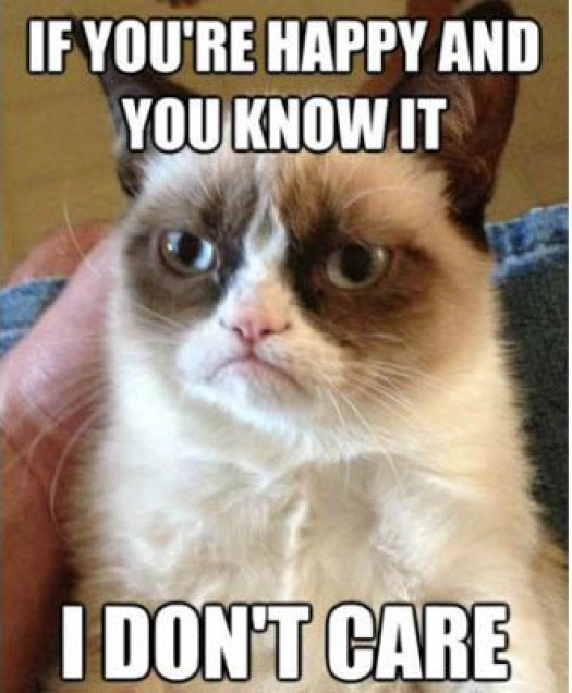 Grumpy Cat Memes If You Are Happy And You Know It I Dont Care Pic