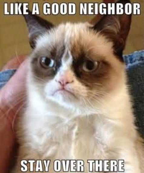 Grumpy Cat Memes Like A Good Neighbor Stay Over There Picture Grumpy Cat Meme