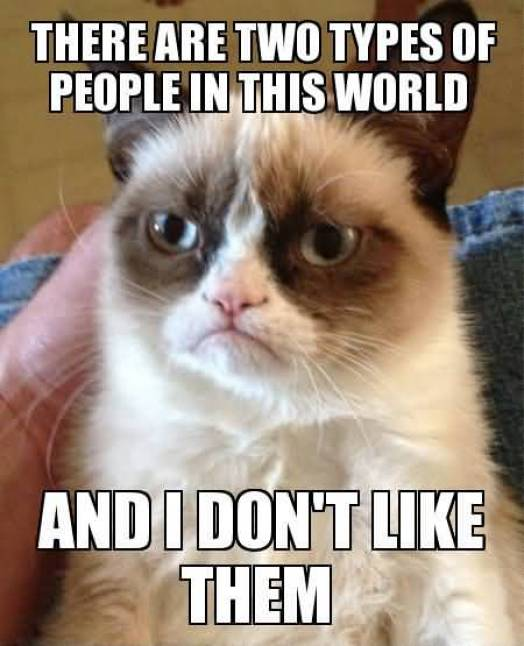 Grumpy Cat Memes There Are Two Types Of People In The World And I Dont Like Them Image