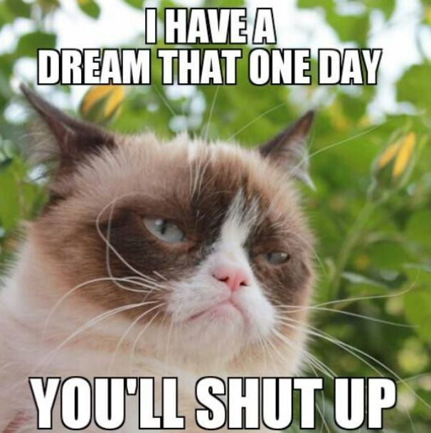 I Have Dream That One Day You Will Shut Up Grumpy Cat Memes Photograph