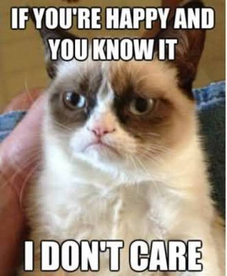 If Youre Happy And You Know It I Dont Care Grumpy Cat Memes Photo