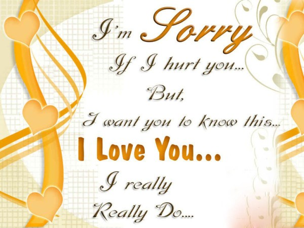 I'm Sorry If I Hurt You I Really Love You Message Image