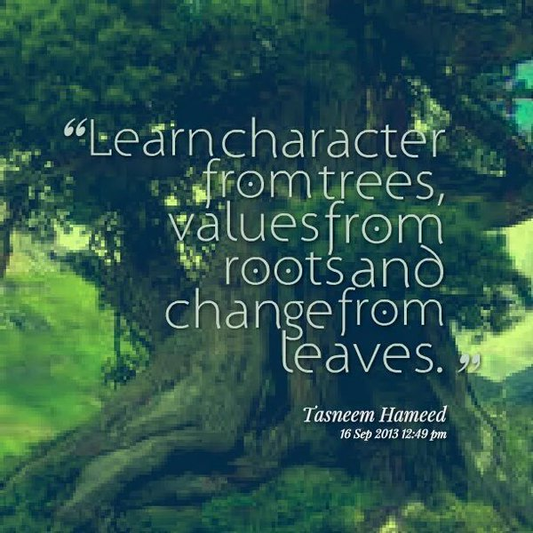 Learn character from trees values from roots and change from Tasneem Hameed