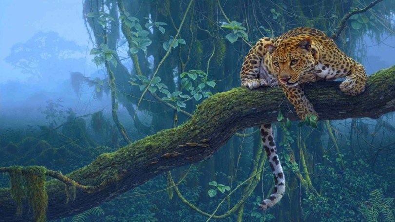 Leopard On Big Tree Branch 4k Wallpaper