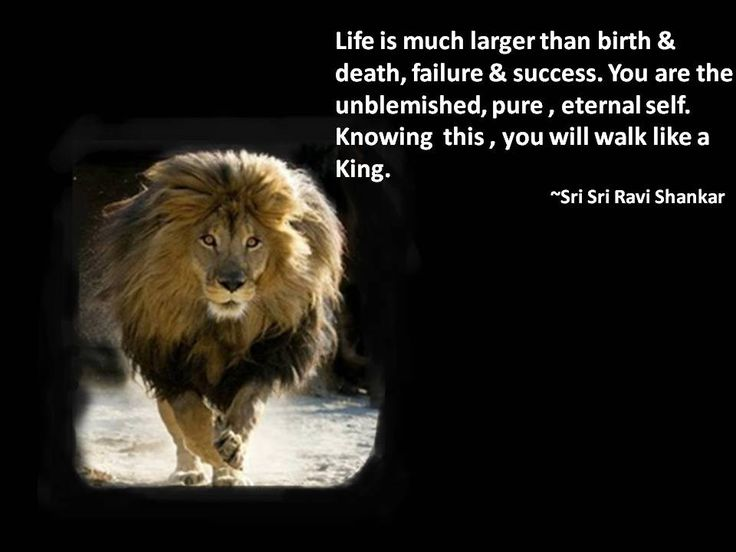 Life Is Much Larger Than Birth Death Failure Success. You Are The Unblemished Pureeternal Self. Knowing This U Will Walk Sri Sri Ravi Shankar