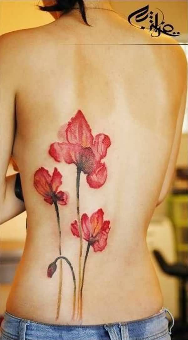 MOST CUTE Poppies tattoo ON BACK With colourful ink For Man And Woman