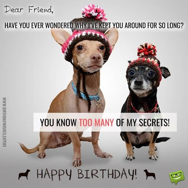 Funny Co Worker Birthday Quotes: 42 Nice Coworker Birthday Wishes, Greetings & Photos