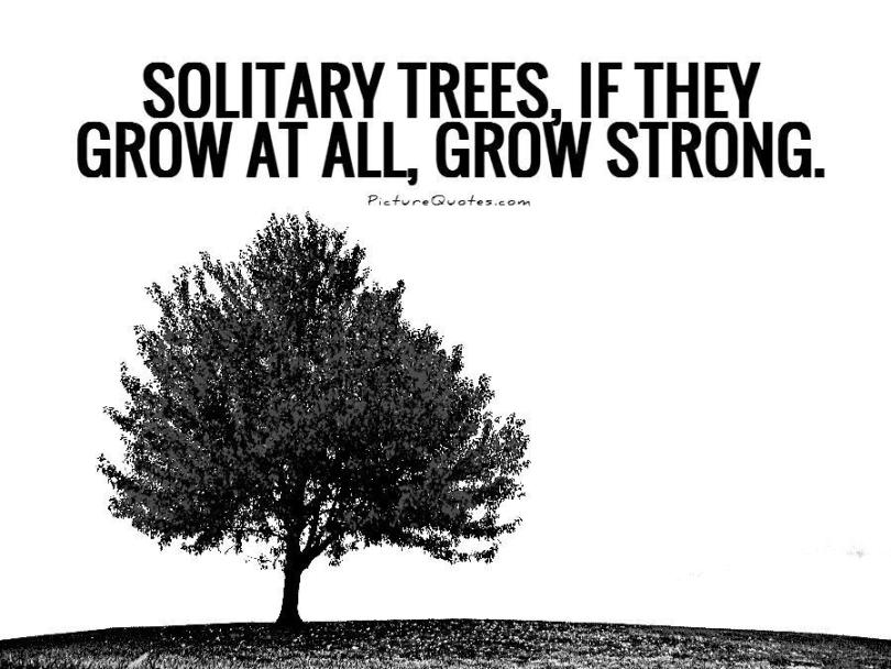 Solitary trees if they grow at all grow