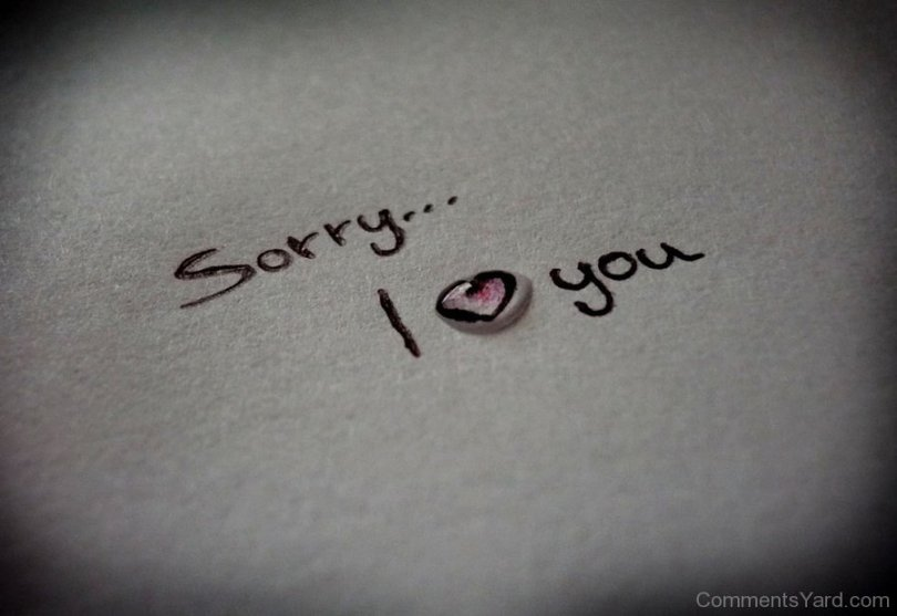 Sorry I Love You Wallpaper Sorry Wishes Image