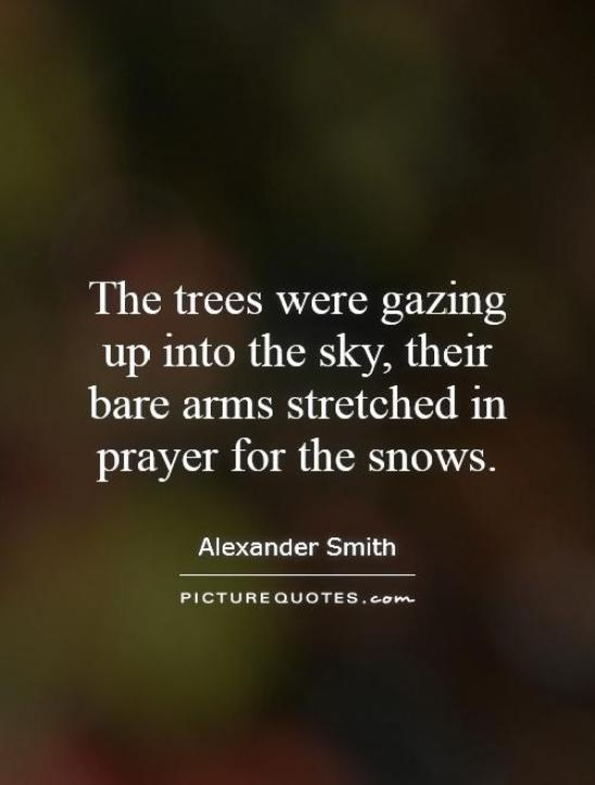 The trees were gazing up into the sky their bare arms stretched in prayer for the Alexander Smith