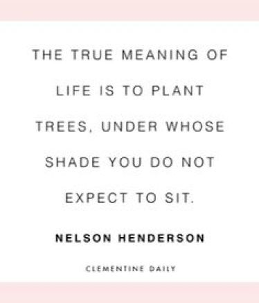The true meaning of life is to plant trees under whose shade you do not expect to Nelson Henderson