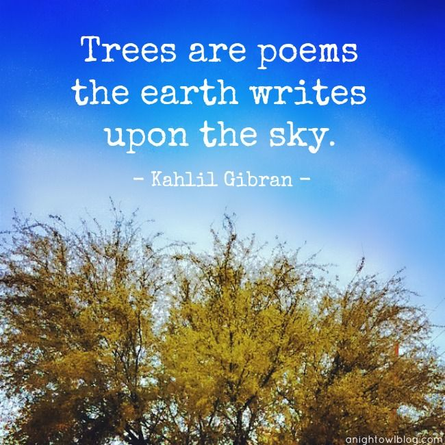Trees are poems that the earth writes upon the Kahlil Gibran