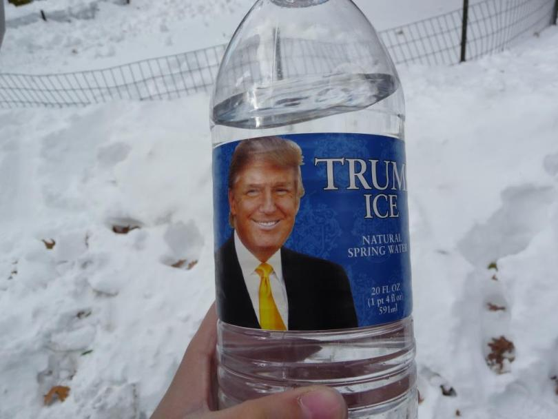 Trump Ice Hd Wallpaper