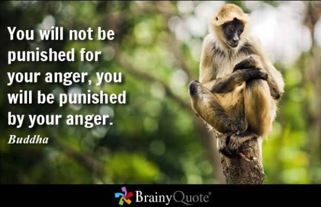 You Will Not Be Punished For Your Anger You Will E Punished By Your Anger Buddha