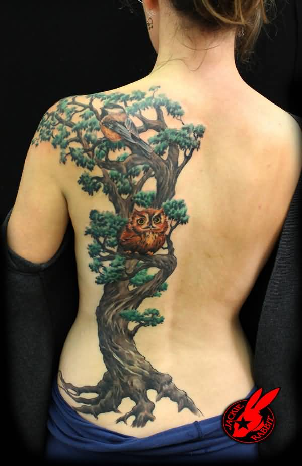 Attractive Tree Bird Owl Back Tattoos For Women On Back On Back With Black Ink For Women