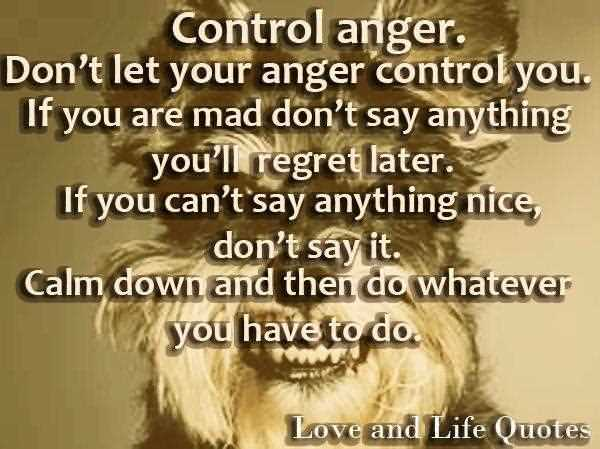 Control Anger Dont Let Your Anger Control You If You Are Mad Dont Say Anything Youll Regret Later If You Cant Say Anything Nice Dont Say It Calm Down