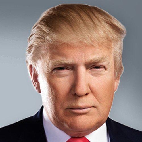 Donald Trump Hair Style