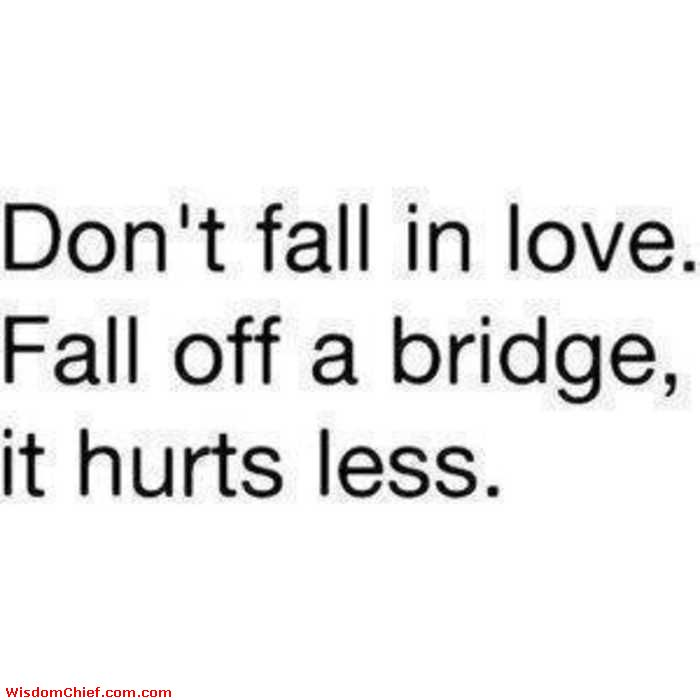 Dont Fall In Love Fall Off A Bridge It Hurts Less