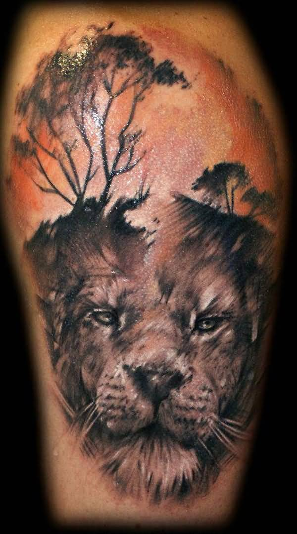 Fantastic Red And Yellow Color Ink Wild African Lion Tattoo On Boy Body For Man