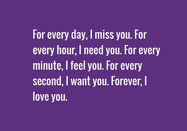 For Every Day I Miss You For Every Hour I Need You For Every Minute I Feel You For Second I Want You Forever I Love You