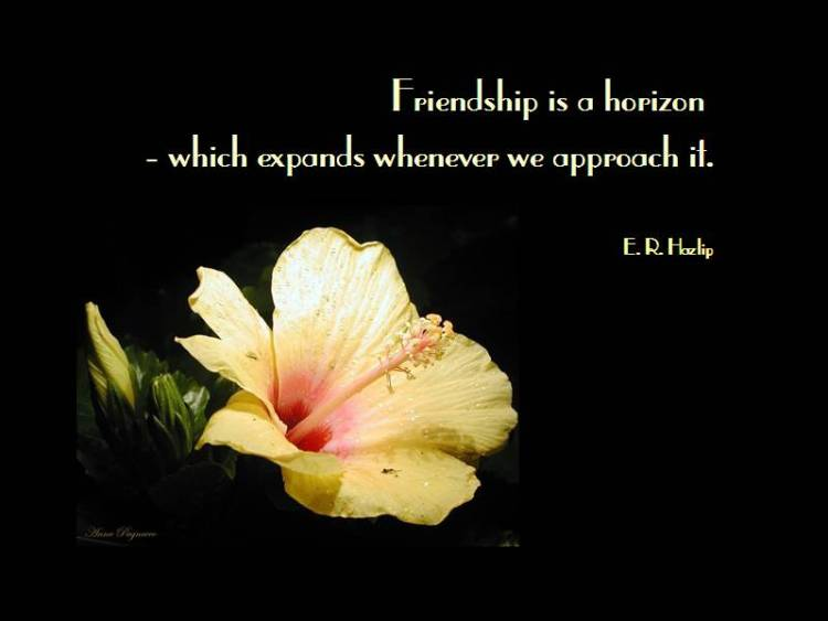 friendship is a horizon which expands whenever we approach it. e. r. hozlip