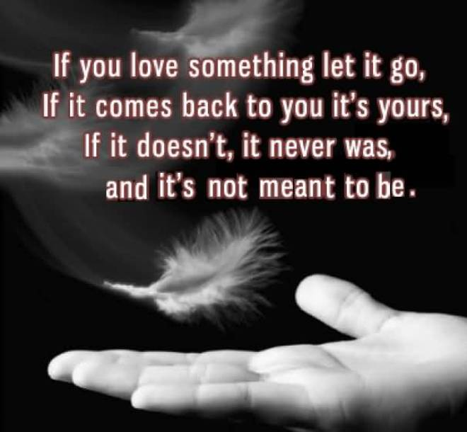 If You Love Something Let It Go If It Comes Back To You Lts Yours If It Doesnt It Never Was And Its Not Meant To Be