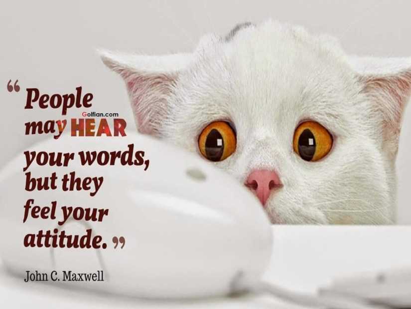 People May Hear Your Words But They Feel Your Attitude John C Maxwell