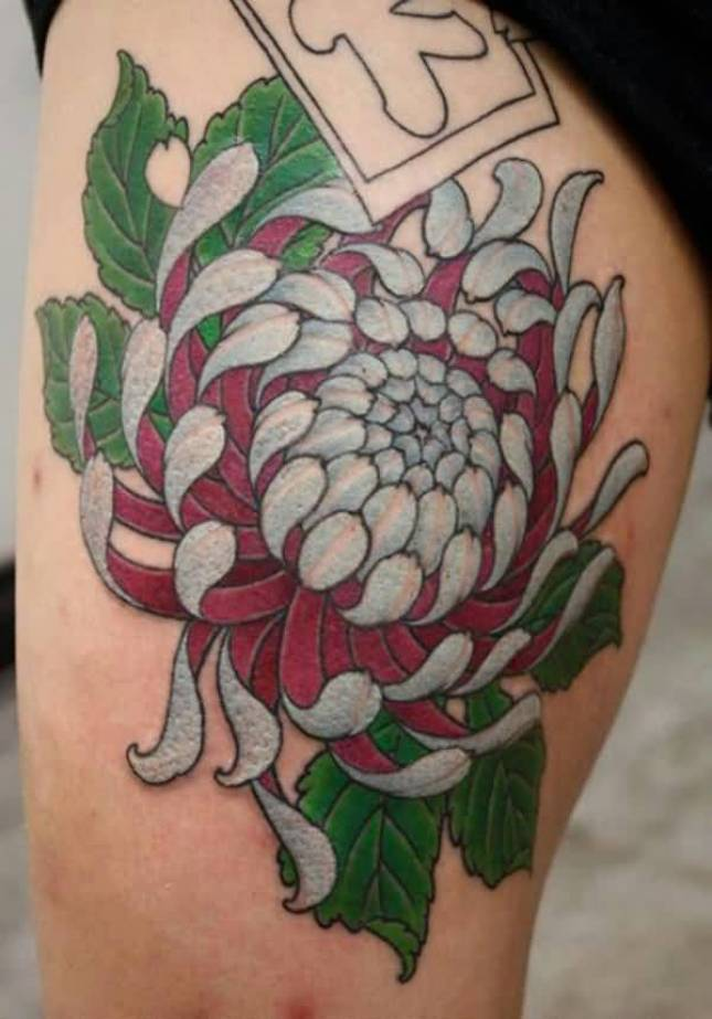 trendy chrysanthemum tattoo on thigh with colourful ink for man & woman