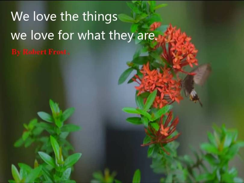 We Love The Things We Love For What They Are Robet Frost