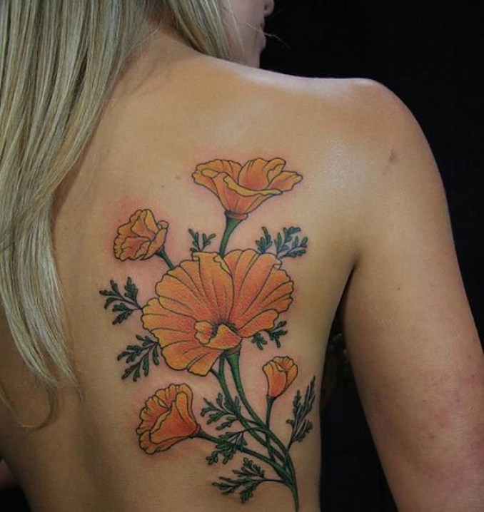 wonderful Poppies tattoo on back With colourful ink For Man And Woman