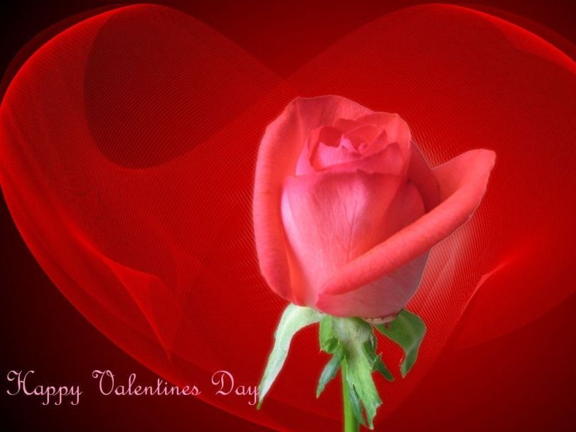 Attractive Happy Valentine Day Greetings To My Love
