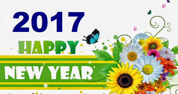 Best Wishes Happy New Year 2017 Wishes Image