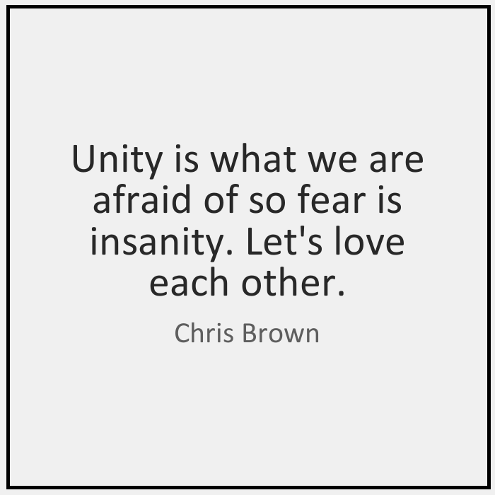 Chris Brown Quotes Unity is what