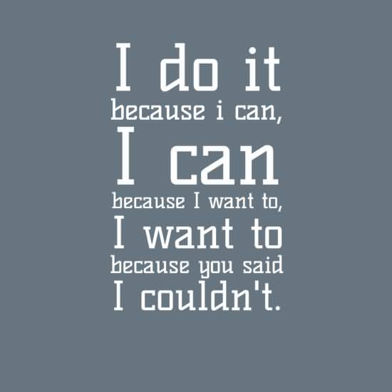 Do Sayings I do it because i can because i want to i want to because you said i couldn't