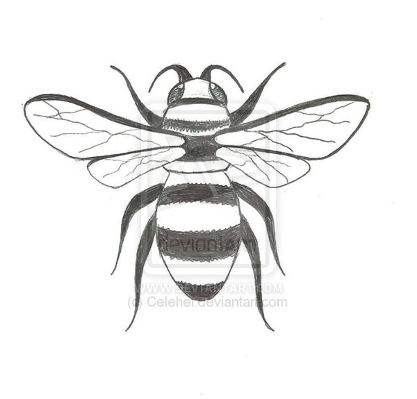 Fantastic Black And White Color Bee Tattoo Design For Girls