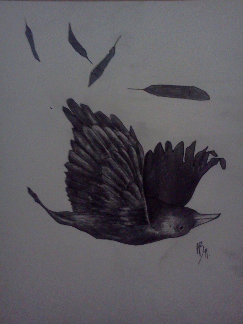 Fantastic Black Color Ink Falling Crow Tattoo Design For Girls