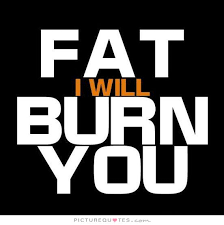 Fat Quotes Fat i will burn you