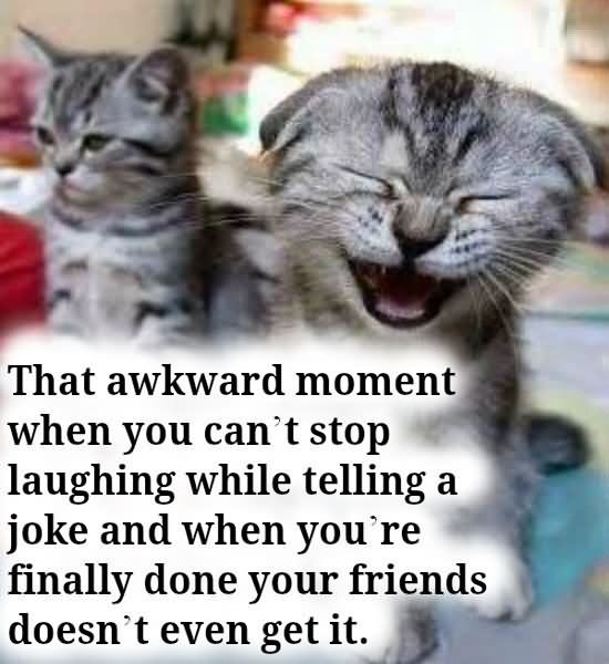 Friends Quotes That awkward moment when you cant stop laughing while telling a joke and when youre finally done your friends doesnt even get it