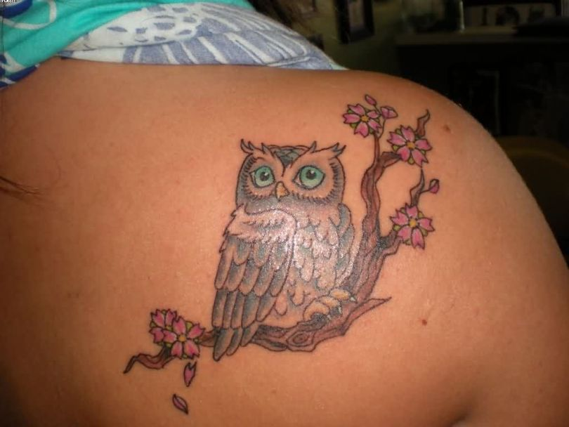 Funny Owl Tattoo Sitting On Right Upper Back For Female