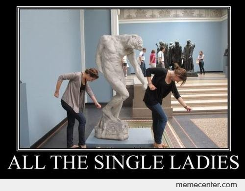 Funny Single Meme All the single ladies