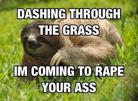 Funny Sloth Rape Memes Dashing through the grass I'm coming to rape Pictures